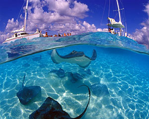 Homepage/grand-cayman.jpg